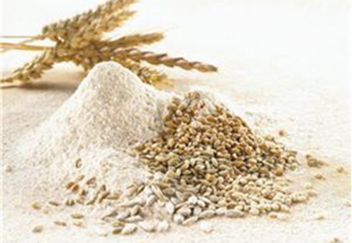 小麦淀粉批发
